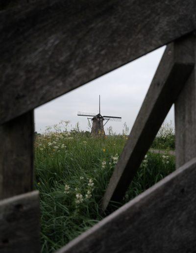 12-hollandmood-blackartcz0