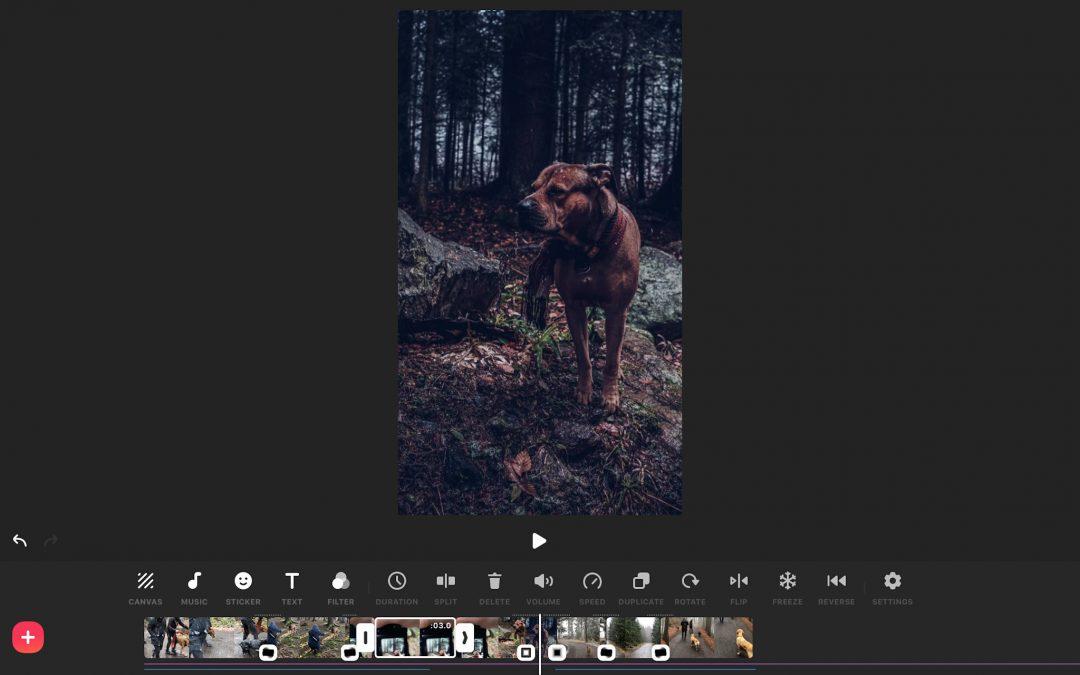 inShot I Jak stříhám video v iPhonu a iPadu?